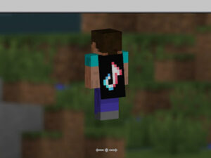 Read more about the article How to get Java capes in MCPE – Pocket Edition